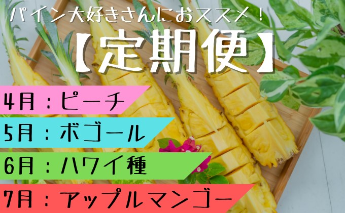 【2021年発送】☆『1%の奇跡』☆パイナップル・マンゴー 定期便(4月・5月・6月・7月発送)