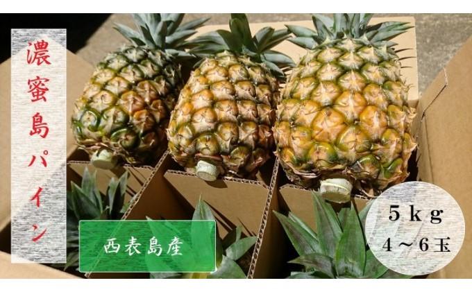 """【2021年発送】ますみ農園""""蜜たっぷり"""" 島パイン(ハワイ種)約5kg(4~6玉)"""