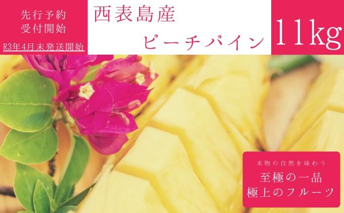 【2021年発送】☆『1%の奇跡』☆芳醇な桃の香り☆ ピーチパイン 約11kg(12~16個入)