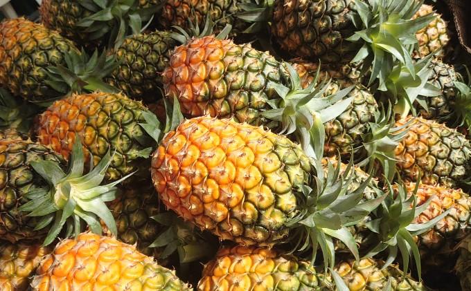 【2021年発送】ますみ農園『桃の香り ピーチパイン』約11kg(12~16玉)