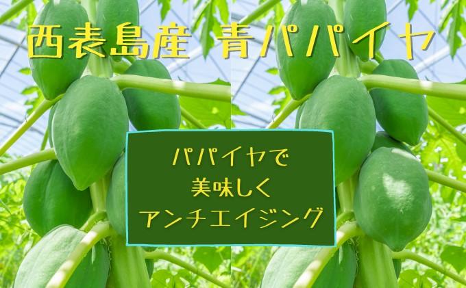 【2021年発送】酵素の力で「美味しくアンチエイジング」★調理用 青パパイヤ 約3kg★