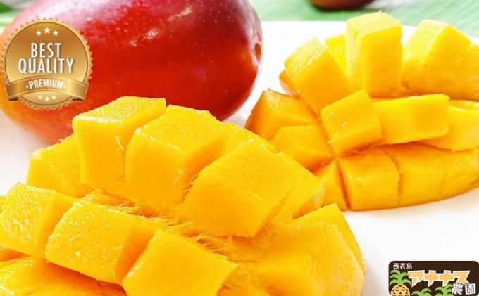 高糖度15度以上厳選!!西表島アナナス農園の完熟アップルマンゴー 約1kg