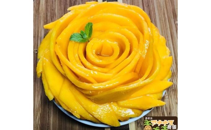 亜熱帯西表島の夏の太陽をいっぱいに浴びた!!アナナス農園の完熟 アップルマンゴー 約700g
