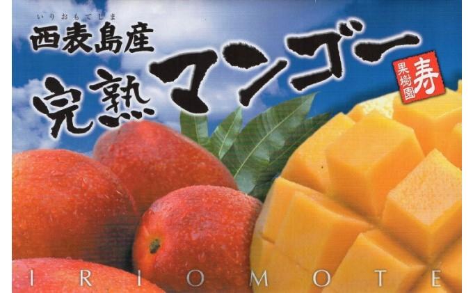 完熟 マンゴー 1kg入り(2玉~3玉)