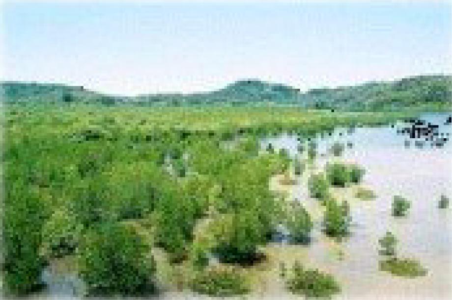2. 自然環境の保全に関する事業