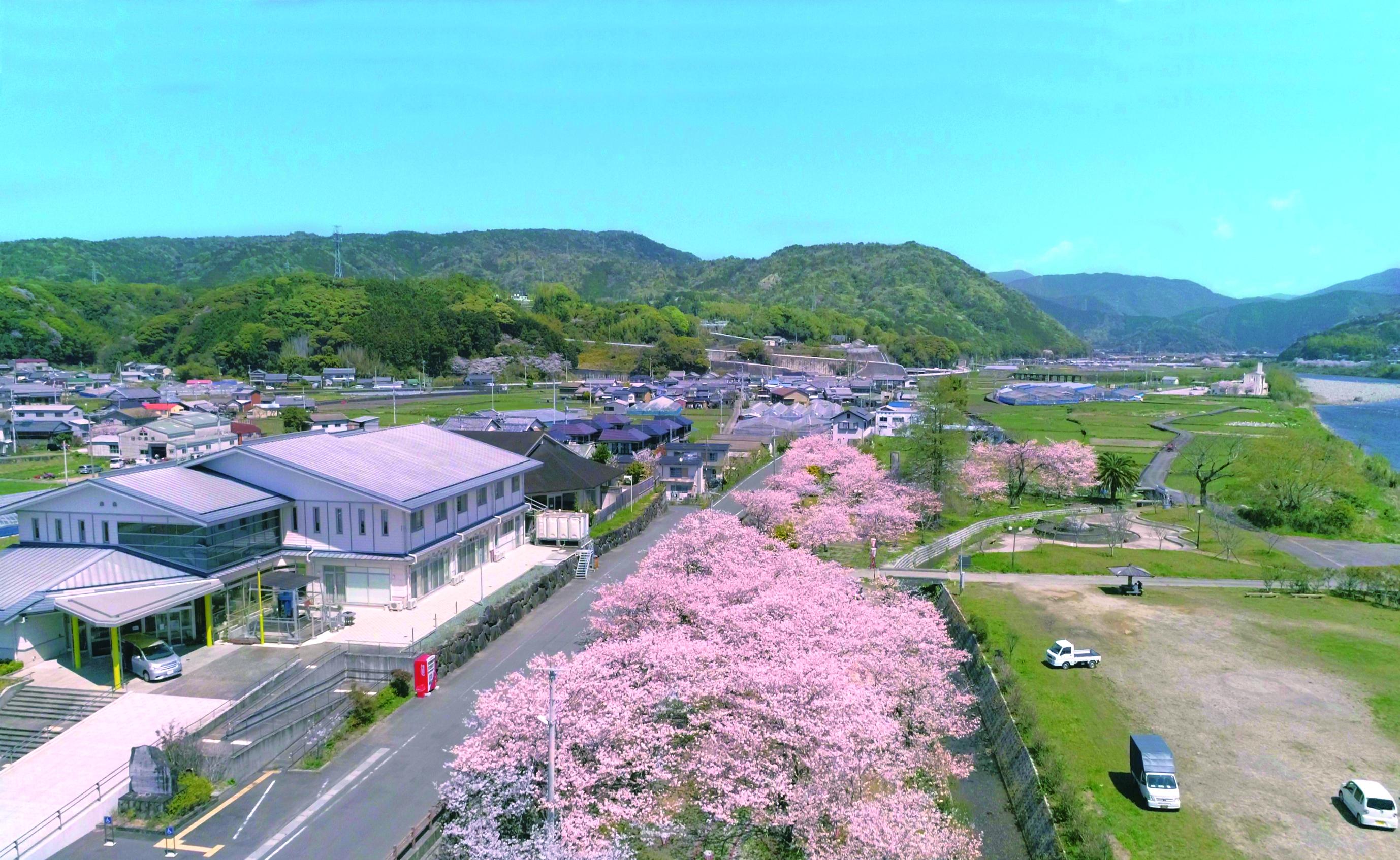 「JALふるさと納税」に高知県田野町が参加しました。