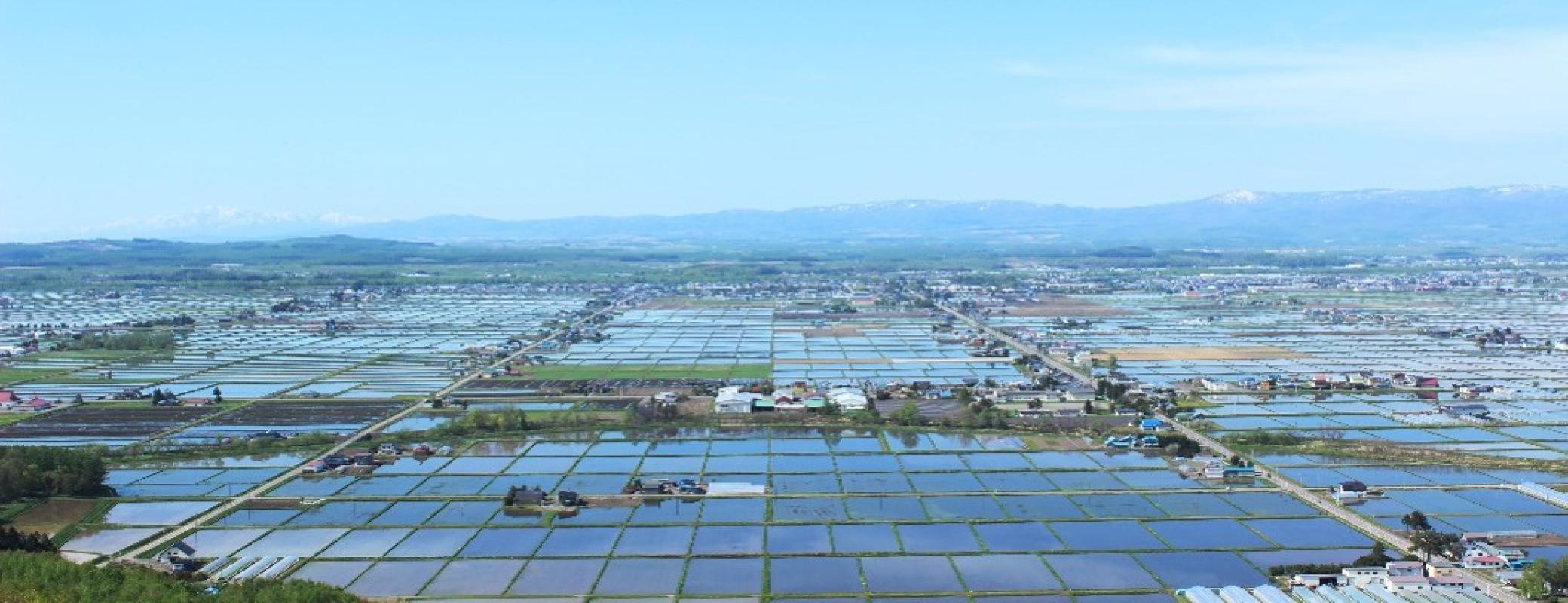 「JALふるさと納税」に北海道東川町が参加しました。
