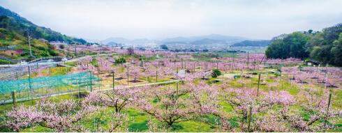 岡山県 赤磐市